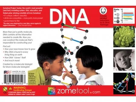ZOME ADN