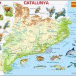 PUZZLE MAPA FÍSIC DE CATALUNYA (CATALÀ)